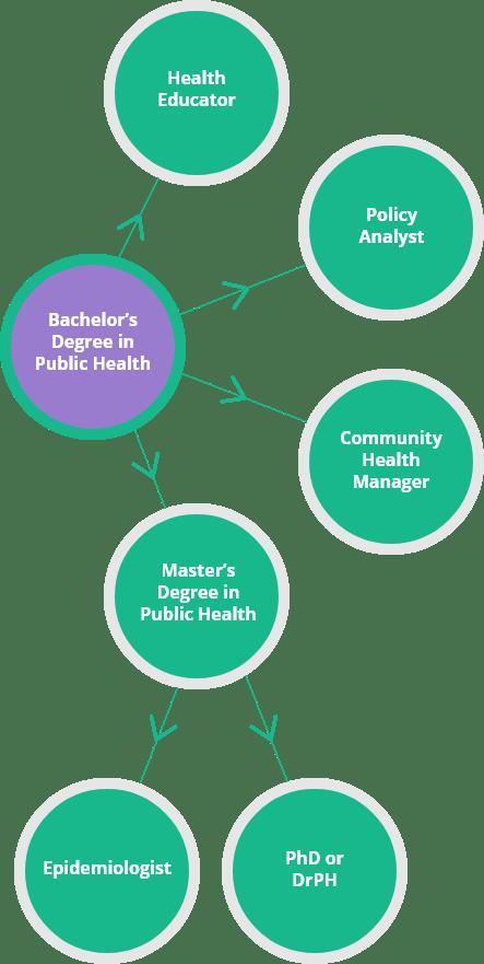 public-health-bachelor-chart
